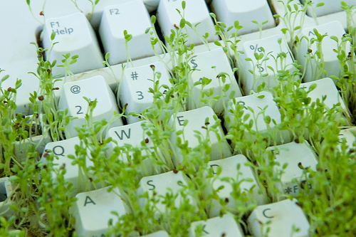 green-keyboard
