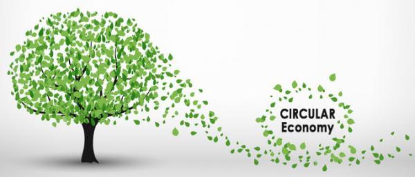 Circular Economy Tree