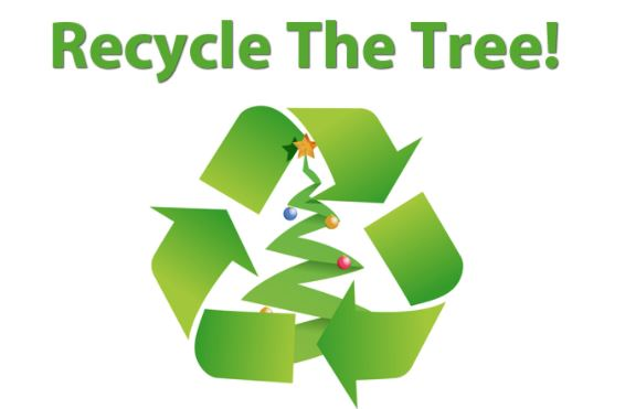 Recycle The Tree 2017