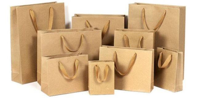 0019 Reuse or Biodegradable Shopping Bags