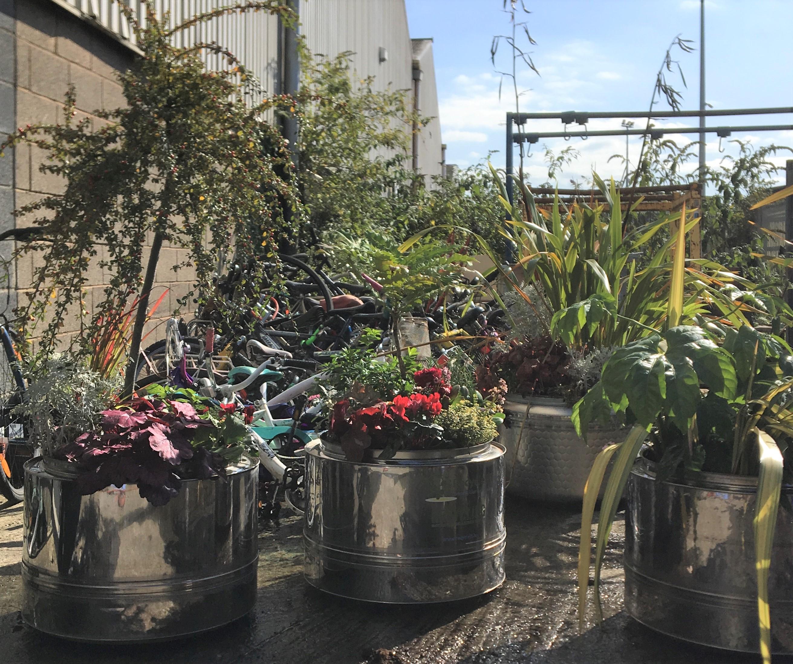 2020 11 planters IMG_0179 (2)